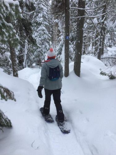 annick-gendron-hiver2019-activites (11)